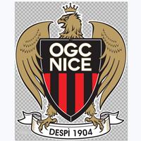 尼斯足球俱乐部